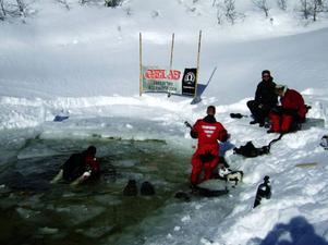 Sammanlagt 150 dyk har expeditionen hunnit på två veckor, vilket omgjort till tid betyder över 88 dyktimmar i det ofta nollgradiga vattnet.
