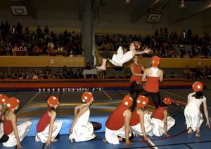 Tre sporthallar blir en. Vad det kommer att innebära för föreningarna, som till exempel Hällefors gymnastikföreing, är oklart. Bilden är från en av HGF:s shower. ARKIVBILD: ANDERS ALMGREN