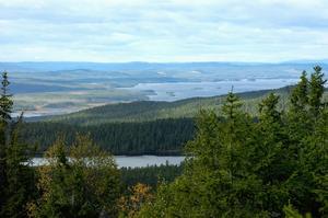 Turismen till Dalafjällen har firat stora triumferi sommar. Foto: Kjell Jansson/Arkiv.