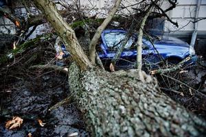 Ovädret drabbade länet med full styrka under natten mot annandag jul. Polisen klassade stormen som en naturkatastrof.