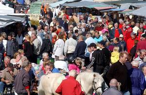 Mittmarken, populär marknad.
