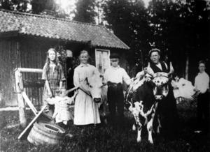 Tidigare Sätrabor – den sista torparfamiljen på Nyöster. Ur boken