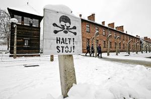 Bild från Auschwitz.