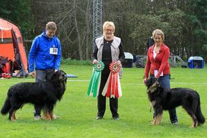Domare Anita Withmarsh omges här av BIS Elligårdens Vessla som handles av Sandra Randström (till vänster), och BIM Hofmacher Fargo som står med sin husse Jukka Salmi (till höger).