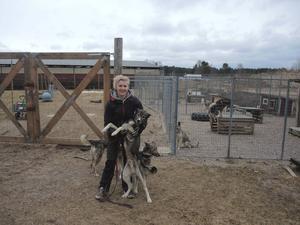 Camilla Buvall har sju siberian husky-hundar hemma på gården i Stumsnäs. Nu har hon planer på att börja avla för att förnya sitt eget spann. Till saken hör att valpar efter hennes tik nyligen sprang hem ett VM-silver.