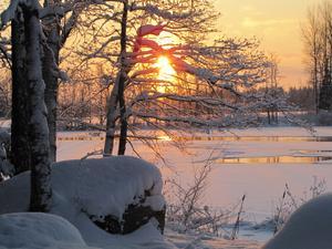 Pulsade iväg i snön till Naturreservatet Kohagen i Surahammar där var det så här vackert vid solnedgången