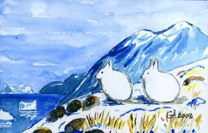 Polarharar av Gunvor Åsblom, Bollnäs.