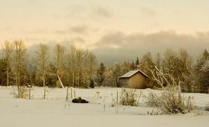 Lada i vinterlandskap Foto: Gerd Williamsson
