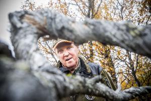 Skogsägare och fastighetsägare Tommy Hegestrand från Jönköping.