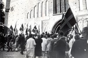 Svenska flaggans dag 1971.