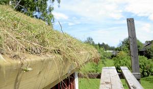 En sida i taget. På grund av vädret får den andra sidan sidan av taket vänta tills nästa sommar.