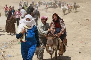 Syrier på flykt korsar gränsen mot Irak.