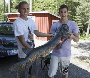 Kalle Wiklander (till vänster) hjälper till att hålla upp fisken som Fredrik Blomberg fångade på torsdagen i Gryttjen.