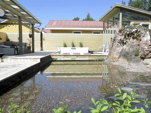 Vy över den biologiska poolen med dammdelen, bryggan och baddelen .