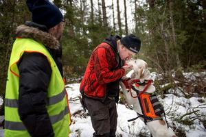 Hunden Elda får beröm av Johan Eklöf för exemplariskt arbete i kontakt med vildsvinen.