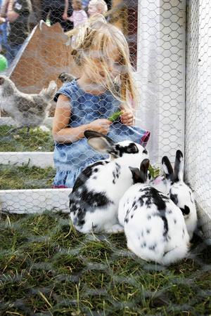 Mimmi tycker att kaninerna är de gulligaste djuren