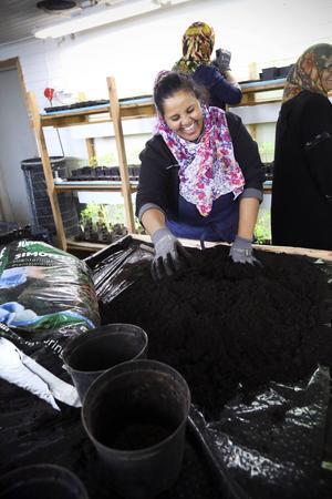 Tsgereda Solomon hoppas att deltagandet i Växa ska leda till ett riktigt jobb. Hon trivs i Mörsil och vill stanna kvar i byn. Det är bra för barnen att bo här, menar hon.