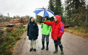 Ulla Magnusson, Margareta Wikström och vice ordförande Karin Åström är alla medlemmar i Naturskyddsföreningen. Foto: Staffan Björklund
