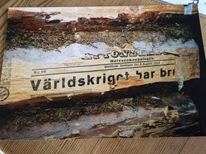 Tätningen av husmossa och tidningar.