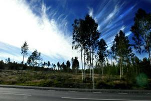 Här i Sörnacksta söder om Sidsjön vill Myresjöhus få ensamrätt på att marknadsföra tomter.
