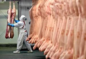 Slakteri. Förra året uppdagades en skandal där tusentals ton hästkött såldes som vanligt biffkött. EU har sedan dess arbetat hårt för att återställa förtroendet för livsmedelsbranschen hos allmänheten.