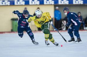 Bild från en match mellan Ljusdal och Borlänge i den norra allsvenskan förra säsongen.