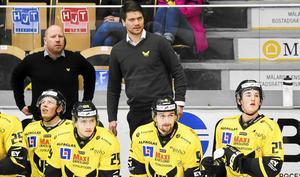 Thomas Paananen, tränare VIK Hockey