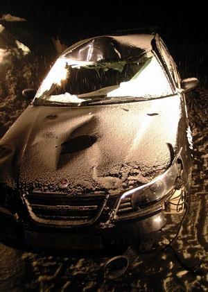 Bilen fick omfattande skador vid älgkrocken i Pilgrimstad.