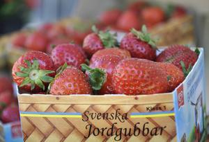 Jordgubben har odlats i Sverige sedan slutet av 1700-talet.