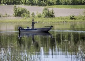 Sommarfiske – Stilla och vackert. Väldigt mycket Sverige. Lockande och inbjudande. Lätt sidoljus.
