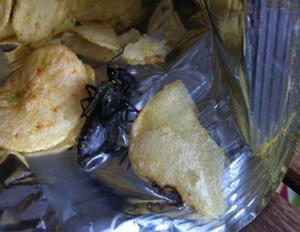 När Cinnicka Skoglund från Vivalla skulle öppna chipspåsen fann hon en friterad skalbagge.
