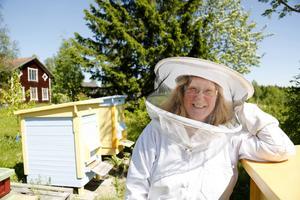 Galina Timermane har god hjälp av hundratusentals bin i sin trädgårdsodling. Just nu har hon nio bikupor.