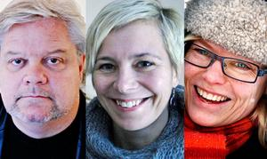 Lars Bolin, Kajsa-Tuva Henriksson och Karin Kvam är några av de som tycker till om avbokningen av Vilks.