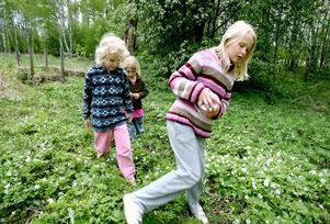 Elinda Green, Wilma Jansson och Maja Jansson gav ut sig på trollsländejakt.