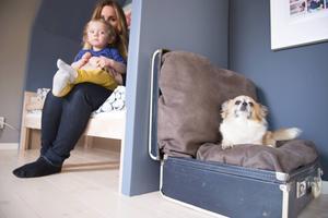 Molle upptäcker sitt nya rum. Sängen har byggts in med tak och väggar och en gammal resväska med mysiga kuddar blev en mysig plats för sällskapssugna husdjur.