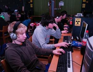 LAN-fest. Anton Gunnars, Erik Sommarström och Kalle Hansson är några av de som deltar i LAN-partyt i Rättvik. Foto: SANDRA MATTSSON