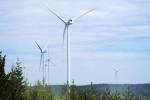Så här ser Jädraås vinkraftspark i Ockelbo kommun ut. Den består av 66 vindkraftverk och ägs också av Arise AB.