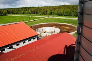 I mitten av den stora gödselbehållaren bakom ladugården kommer biogasanläggningen stå. En del av behållaren kapslas in så det blir helt syrefritt kring koskiten. Sedan värms innehållet upp och metangas bildas.   Foto: Catarina Montell