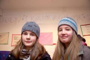 Lina Wikström och Joanna Ahrens hade gjort två bonader som de hade hänt upp på Galleri Katten.Foto: Jonas Ottosson