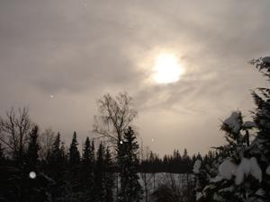 Tagen en mulen februari eftermiddag. Vackert som en tavla!
