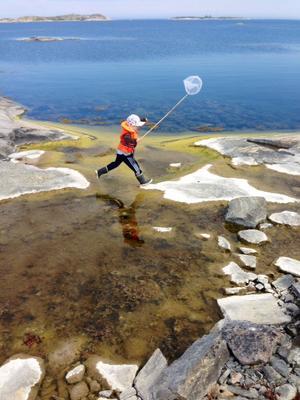 Benen full av spring. Bilden föreställer mitt barnbarn Lex som njuter av sommaren ute på Röder, Norrskärgården.