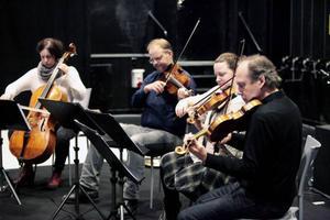 Archi Jamt ger med sina stråkar en bredare klangvärld – Katarina Åhlén, Peter Roos, Louise Olsson och Bengt-Erik Norlén.