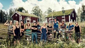 Farmen i TV 4.