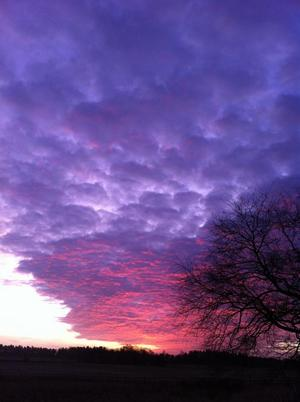 Precis när det var som mest prat om stormen Dagmar vaknade vi upp till den här vackra men lite oroväckande himlen. Var det lugnet före stormen? Vackert men oroväckande:=)