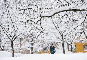 Hedbergska parken i Stenstan, även kallad ja- och nej-parken, liknar ett vackert vinterlandskap. Och mer snö lär det bli i början på veckan.   – På måndag blir det ett ihållande snöfall, säger Erik Rindeskär, meteorolog på Foreca.