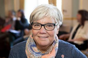Monica Fällström (S) kritiserar Jacke Sjödin.