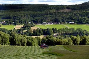 Landsbygd Åker Åkrar Ängar Traktor Landsbygden
