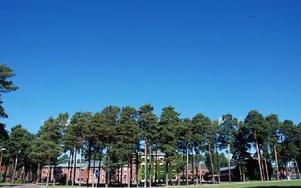 Datorerna var försäkrade, men det tar tid att få fram nya datorer till eleverna, berättar rektor Göran Berg. Foto: Katarina Cham