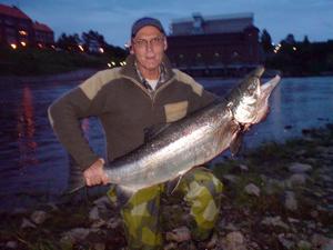 KVÄLLSFÅNGST. Bosse Sköld, Sandviken hade ledningen i A-Fisket ett par dagar med den här fångsten på 17,5 kilo. Fångstdatum 17 juniFoto: Privat