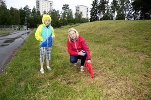 upprörda. Susanne Nilsson och sonen Mats är ledsna över vad som händer med djuren.Foto: Per G Norén